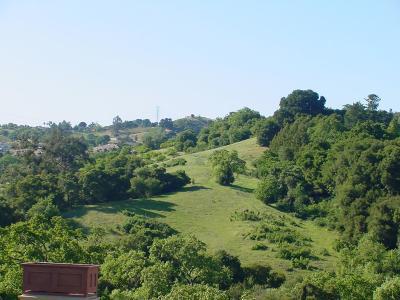Saratoga Residential Lots & Land For Sale: 2 Mount Eden Rd