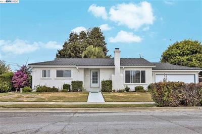 Newark Single Family Home For Sale: 6263 Castillon Dr
