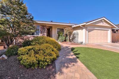 San Jose Single Family Home For Sale: 285 Omira Dr