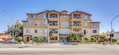 SAN JOSE Condo For Sale: 88 N Jackson Ave 411