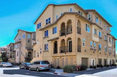 Milpitas Townhouse For Sale: 192 Currlin Cir
