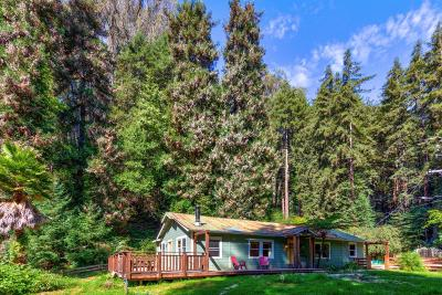 Santa Cruz County Single Family Home For Sale: 735 Mystery Spot Rd