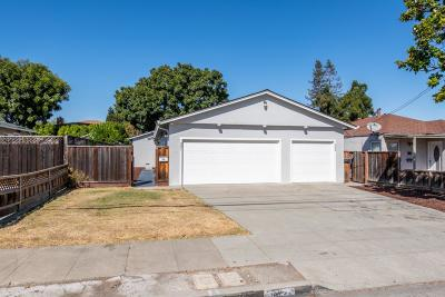 SUNNYVALE Single Family Home For Sale: 381 Roosevelt Ave