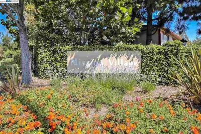 UNION CITY Townhouse For Sale: 100 Camino Plz