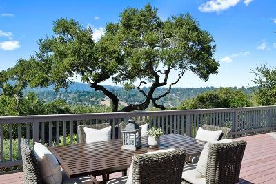 SAN MATEO Single Family Home For Sale: 1298 Parrott Dr