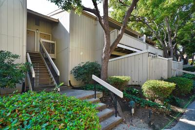 SANTA CLARA Condo For Sale: 940 Kiely Blvd B