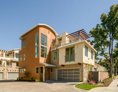 SANTA CLARA Single Family Home For Sale: 3561 Warburton Ave