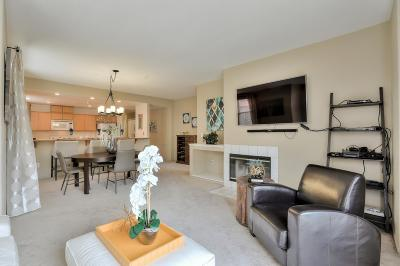 SAN JOSE Condo For Sale: 952 S 11th St 231