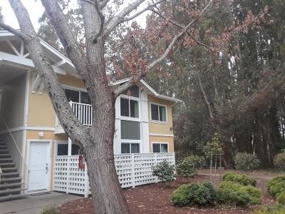 Santa Cruz Condo For Sale: 755 14th Ave 116