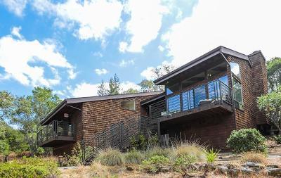 Portola Valley Single Family Home For Sale: 20 Saddleback