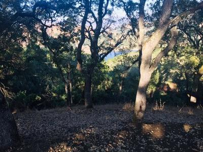 MORGAN HILL CA Residential Lots & Land For Sale: $450,000