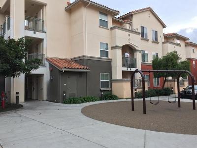 SAN JOSE Townhouse For Sale: 2177 Alum Rock Ave 211