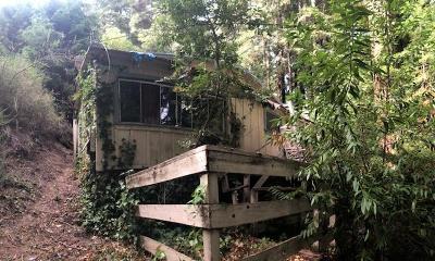 BOULDER CREEK Single Family Home For Sale: 383 Hillside Dr