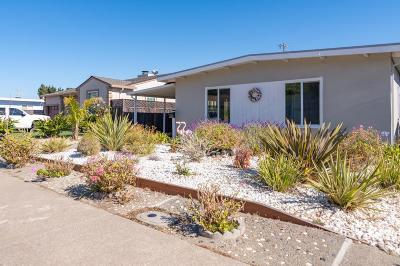 SAN BRUNO Single Family Home For Sale: 718 Pepper Dr