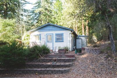 Scotts Valley Single Family Home For Sale: 1042 Bethany Dr