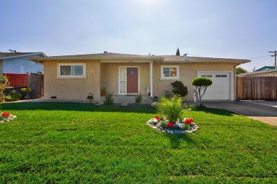 MILPITAS Single Family Home For Sale: 176 Mazey St