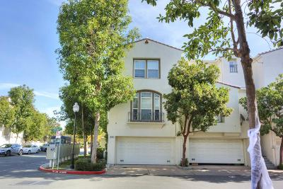 MILPITAS Townhouse For Sale: 874 Fire Walk