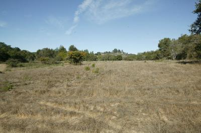 Santa Cruz County Residential Lots & Land Contingent: 1776 N Rodeo Gulch Rd