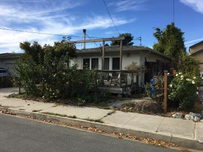 Santa Cruz Single Family Home For Sale: 137 Palmetta St