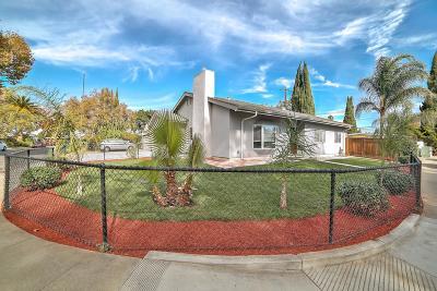 SANTA CLARA Single Family Home For Sale: 1421 Bergin Pl