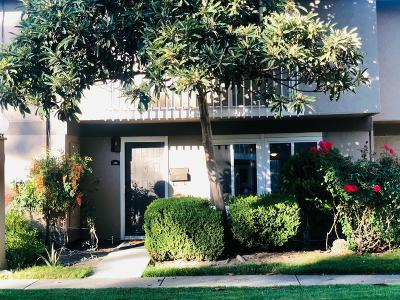 San Jose Condo For Sale: 206 Litchi Grove Ct