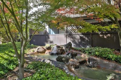 San Bruno Condo For Sale: 1141 Shelter Creek Ln