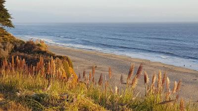 APTOS Condo For Sale: 20 Seascape Resort Dr 20