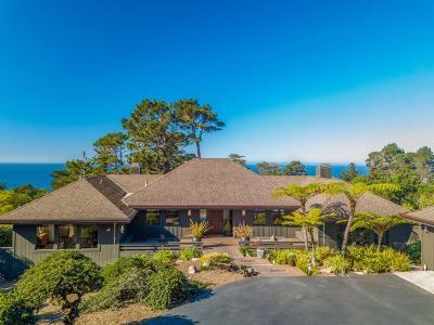 CARMEL Single Family Home For Sale: 32684 Coast Ridge Dr
