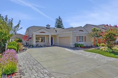 Livermore Single Family Home For Sale: 2838 Gelding Ln
