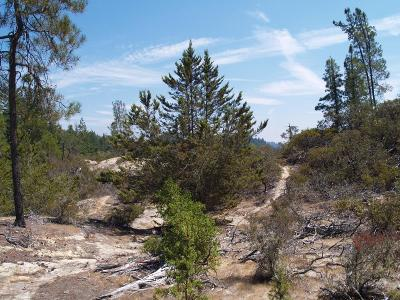 Santa Cruz County Residential Lots & Land For Sale: 0 E Hilton