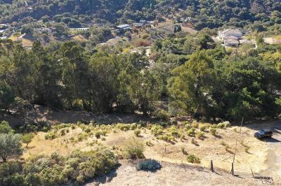 SARATOGA CA Residential Lots & Land For Sale: $1,500,000