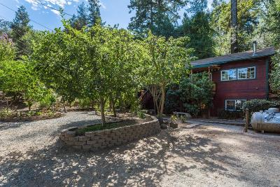 Los Gatos Single Family Home For Sale: 18086 Idalyn Dr