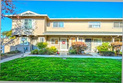 Milpitas Townhouse For Sale: 277 N Temple Dr