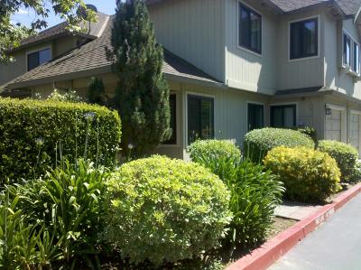 MORGAN HILL Townhouse For Sale: 360 Creekview Dr