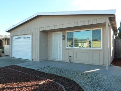 WATSONVILLE Single Family Home For Sale: 491 Spruce Cir