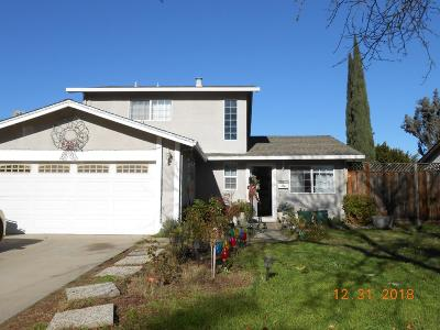 Single Family Home For Sale: 267 Jaggers Dr