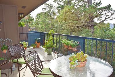 Monterey County Condo For Sale: 281 Del Mesa Carmel