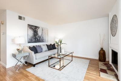 SOUTH SAN FRANCISCO Condo For Sale: 831 Ridge Ct