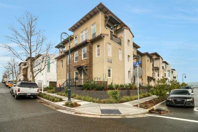 SAN JOSE Condo For Sale: 3097 Lina St 6