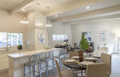 San Jose Single Family Home For Sale: 1491 San Juan Ave