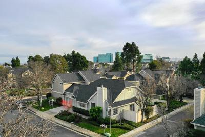 Foster City Single Family Home For Sale: 104 Williams Ln