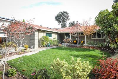 Sunnyvale Rental For Rent: 896m Mango Ave