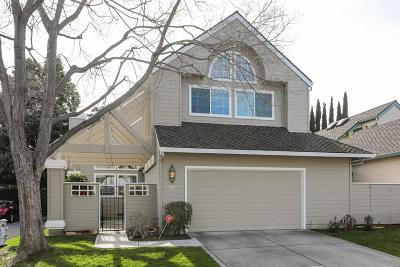 Mountain View Single Family Home For Sale: 721 Tiana Ln