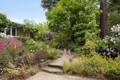 Portola Valley Single Family Home For Sale: 518 Cresta Vista Ln