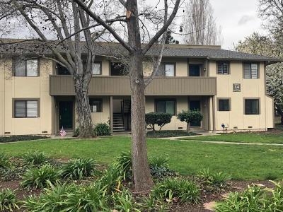Milpitas Condo For Sale: 1097 N Abbott Ave