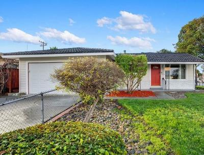 SANTA CLARA Single Family Home For Sale: 753 Laurie Ave