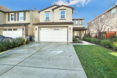 MORGAN HILL Single Family Home For Sale: 240 Mystery Creek Ct