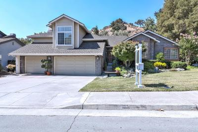 Morgan Hill Single Family Home For Sale: 18535 Murphy Springs Ct