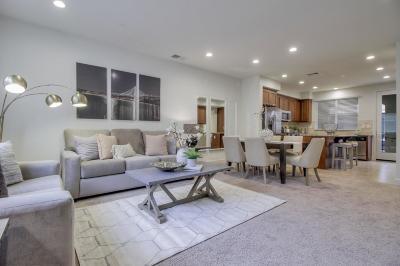 Newark Single Family Home For Sale: 38912 Spicebush Pl