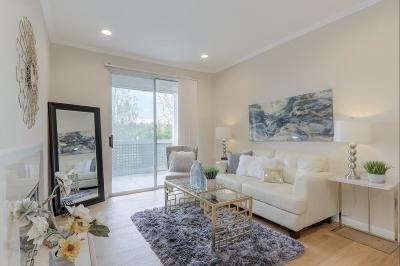 Cupertino, Sunnyvale Condo For Sale: 250 Santa Fe Ter 226